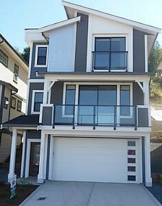 Brand New 3 Bed, 3 Bath House For rent with AC