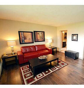Renovated 1 bdrm condo with private laundry and SS appliances
