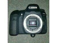 Canon 80D + Lenses