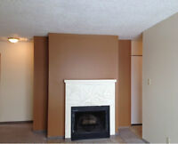 New and Improved Tamaron Square 3brm $980/Month