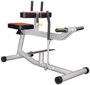 Floor Model / Used Commercial Fitness Equipment CLEARANCE