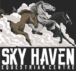 Outdoor Luxury Horse Board at BEAUTIFUL Sky Haven Equestrian