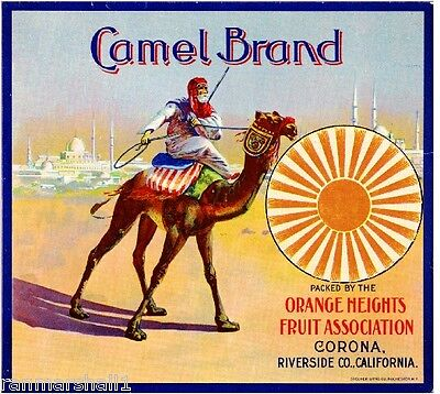 Corona, Riverside Camel #3 Arabian Orange Citrus Fruit Crate Label Art Print