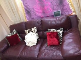 DFS LEATHER SOFA x 4