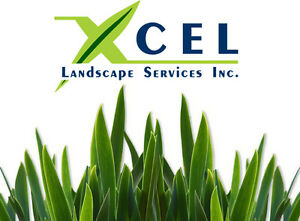 Sod Installation / Sod Removal / Lawn Repair, Landscaping