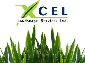 Lawn Repair, Sod Installation, Sod Removal & Landscaping