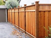 Fence repair &a installation in GTA call 437-7798379