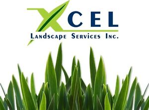 Sod Installation/Removal/Repair and Landscaping
