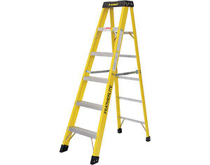 INDUSTRIAL  10 ' FEATHERLITE INDUSTRIAL LADDER