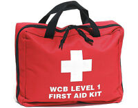 Level 1 First Aid