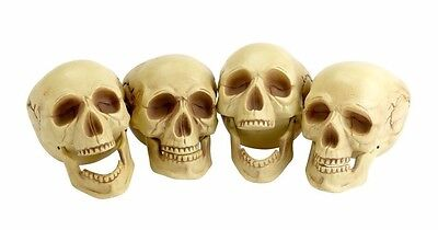 (4) Life-Size Plastic Human Skull Decoration Prop Skeleton Head Halloween - Life Size Skeleton Decoration