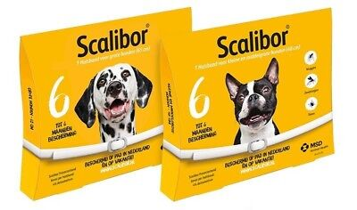 collier antiparasitaire Chien Scalibor  Tick and Flea treatment Collar for dog