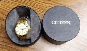 Gold Citizen BF2013-56P Mens watch