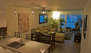 """The Oasis"" Luxurious condo from $165 CAD/night Parking Incl"