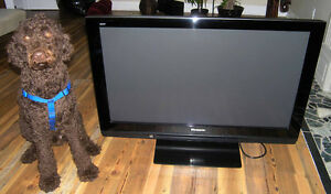 PANASONIC VIERA 42 inch1080p (Model:  TH-42PZ80U)