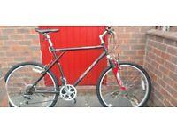 "Paloma GT Mountain bike 26"" frame"