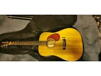 Cort Electro Acoustic guitar earth 100 F