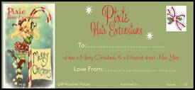 🎄🎀Pixie Hair Extensions**gift vouchers available** ideal christmas gift🎀🎄