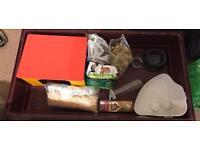 Baby Bunny/Guinea pig bundle - cage / house / litter corner / bowl / bottle / food / run /carrier