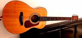 Acoustic guitar & Case
