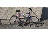 Mountain Bike - Full Size