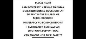 Desperately needing a 1 - 2 bedroom flat or house