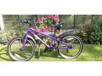 Child's Purple Frog 52 Bike