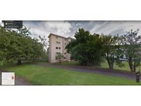 2 bedroom Maisonette Linwood for 2/3 bedroom in Renfrewshire