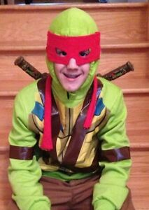 Handcrafted ninja turtle Hoodie size large child.