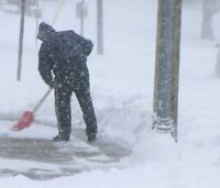 WALKERVILLE - $ 20.00 Snow Removal A GUY and A SHOVEL