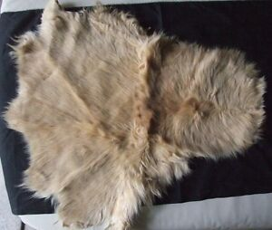 Authentic Tanned RABBIT SKIN fur pelts – lot of 16 pelts