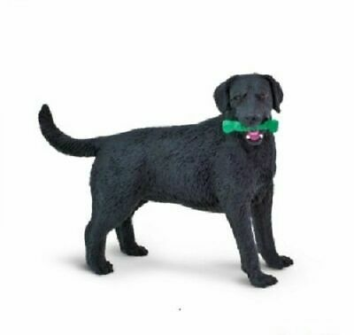 Black Labrador Best In Show Dogs 3.75