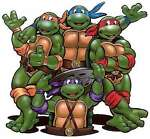 turtles-shop-ninja