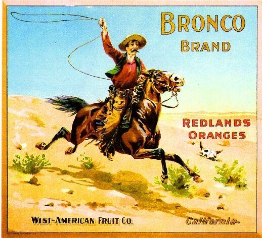 Redlands San Bernardino County Bronco Orange Citrus Fruit Crate Label Art Print