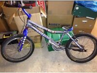 Onza T-bird stunt bike