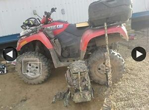 Arctic cat 700