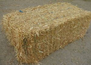 3  rectangle straw bales