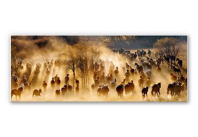Wandbild Zhu - Wildpferde in den Bergen - Panorama HARTSCHAUM BILD ULTRA LEICHT  ()
