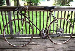 Browning 10-Speed Bike, original owner