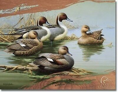 Vintage Replica Tin Metal Sign Duck Unlimited Wet land malard Decoy pintail 1653