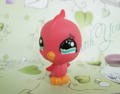 LITTLEST PET SHOP RED LOVE BIRD #1033 Oiseau
