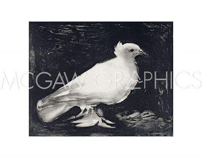 "PICASSO PABLO - DOVE, 1949 - Artwork Reproduction 11"" x 14""   (4175)"