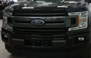 Ford F-150 Front Grill (2018)