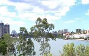 Kangaroo Point - Room for rent with private bathroom!! Kangaroo Point Brisbane South East Preview