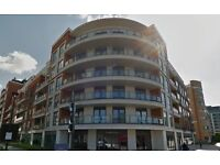 ***MODERN ONE BED FLAT WITH BALCONY *** ACCESS TO COMMUNAL POOL AND GYM***