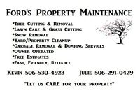 GRASS CUTTING, LAWN CARE, SEEDING, SODDING AND MORE