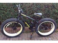 Mammoth bike