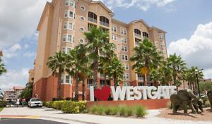 Orlando Magic - 2 bdrm luxury from $795 per week