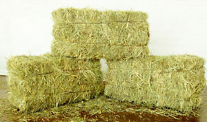 HAY BALES FOR SALE PLUS FIELDS FOR RENT