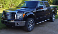 2011 Ford F-150 Pickup Truck - Great condition